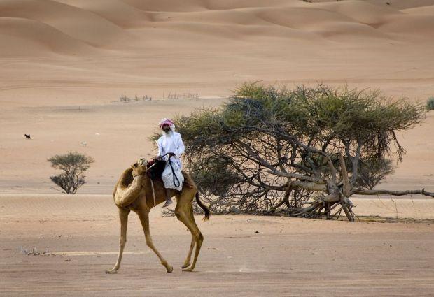 Desert 6 © OT Oman.jpg