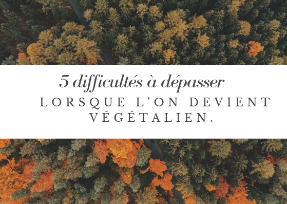 5 difficultés à dépasser lorsque l'on devient végétalien végane